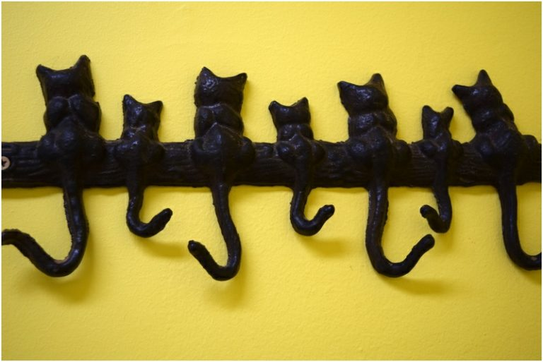 Curtin Veterinary Clinic, our special cat coat hanger