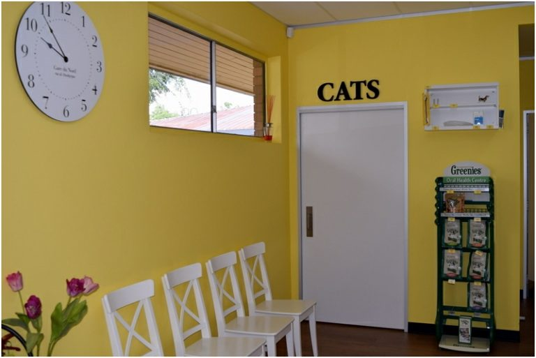 Curtin Veterinary Clinic waiting room