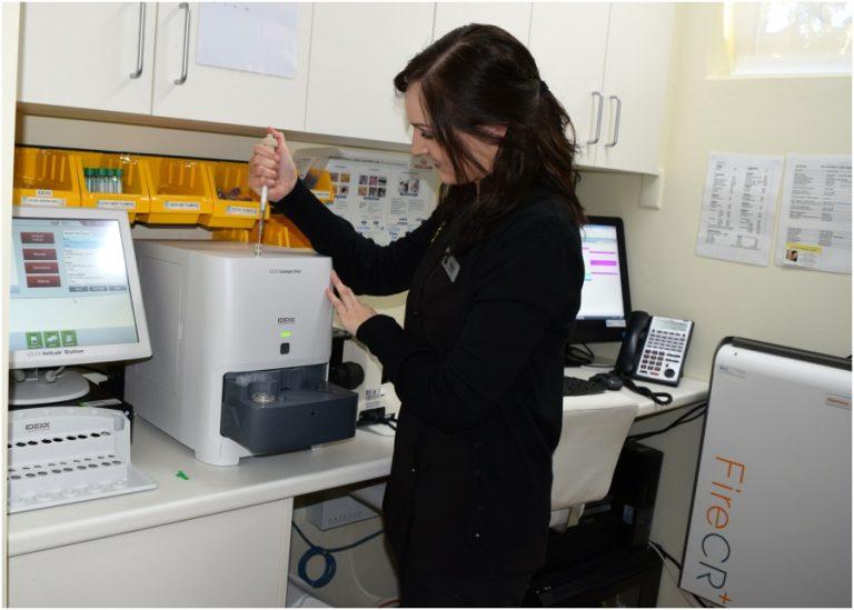 Curtin Veterinary Clinic Laboratory